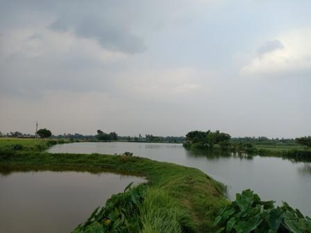Huge potential for freshwater aquaculture in India