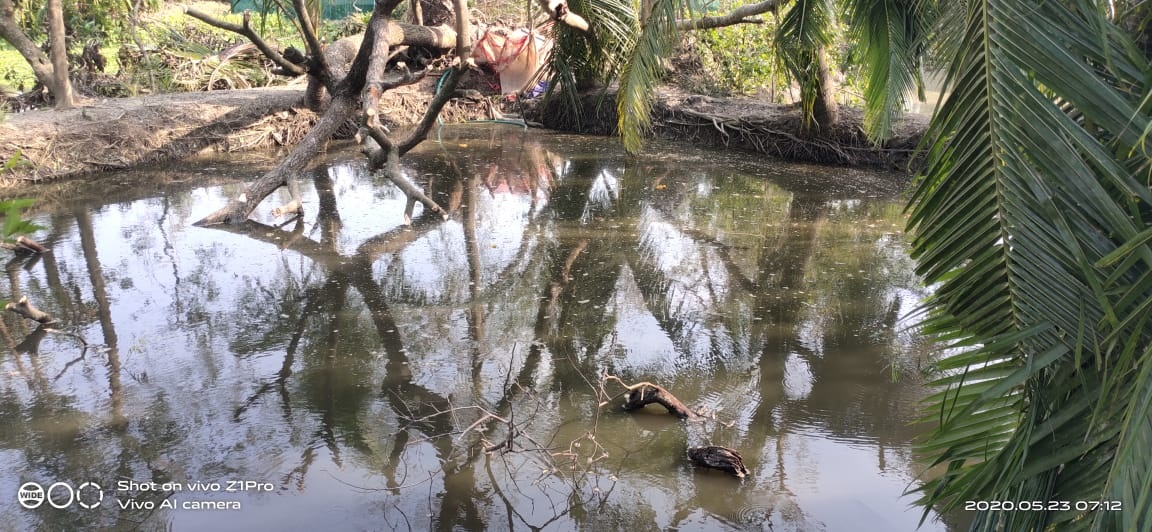Super cyclone 'Amphan' ravages life and livelihoods of tribal in Sundarbans