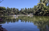 How animal welfare makes aquaculture more sustainable