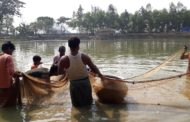 Diversification of Fisheries: Fish farmers in Haldia beat Covid 19 blues