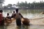 Freshwater Pearl Farming: An Emerging Enterprise in India