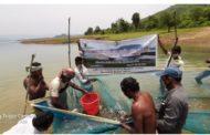 Covid 19: CIFRI adopts Salia reservoir in Odisha for livelihood improvement of fishers