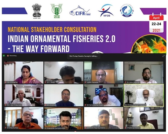 Three days national virtual consultation on 'Indian Ornamental Fisheries 2.0' held