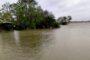 Cyclone Yaas: shrimp farms along Odisha coast will be severely hit