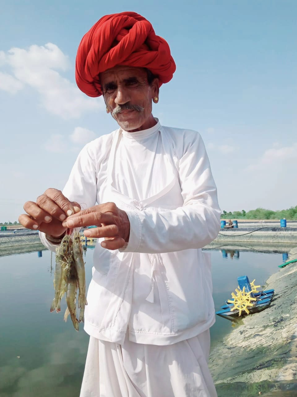 12 tons shrimp production from one hectare in arid Rajasthan